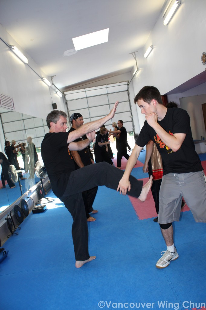 wing chun kung fu movement